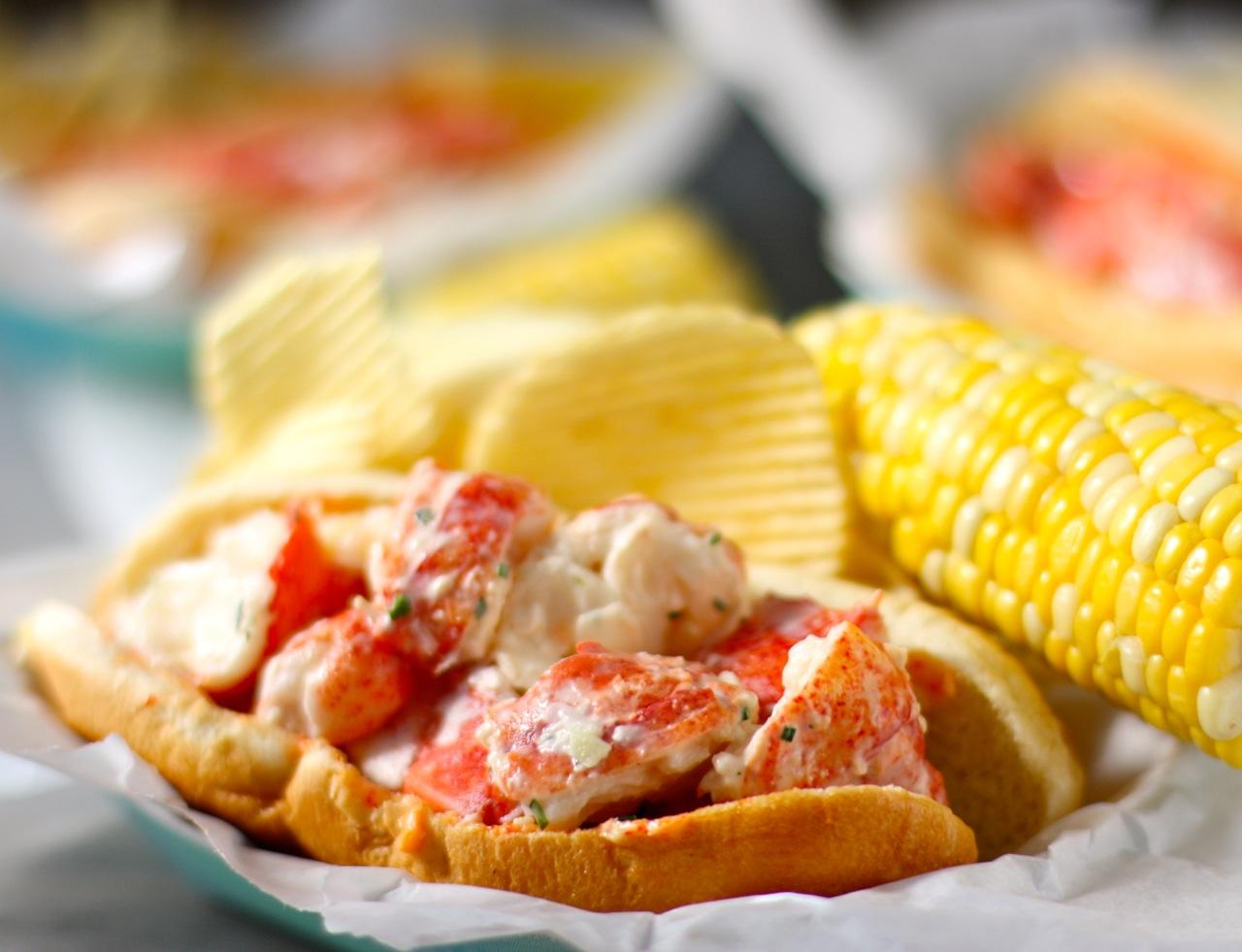 lobster rolls   daisy's world