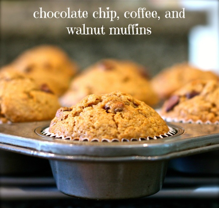 chocolate chip, coffee, and walnut muffins
